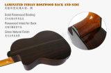 Aiersi Qualität oberste feste elektrische Cutway klassische Gitarre (SG02ARCE)