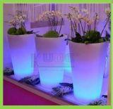 Il giardino decorativo illumina in su il POT di fiore