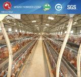 자동적인 층 닭 감금소 장비 (A 프레임)