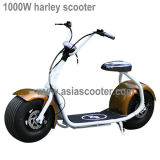 1000W 2 바퀴 성인을%s 전기 Harley 스쿠터