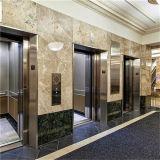 屋内屋外のホテルの小さいホームエレベーターの上昇の製造業者