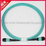 Aqua 12F Fibre optique MPO OM3 Trunk Cables
