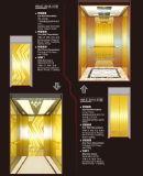 Elevatore collettivo pieno del passeggero con la decorazione di lusso
