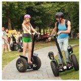 自動電気一人乗り二輪馬車の公安のためのハンドル棒が付いている電気スクーター2の車輪