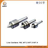 Máquina de trabalho de metal Zay 7045V / 1 para engrenagem com CE