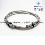 Câmara de ar da trança PTFE do fio de aço