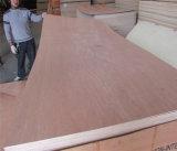 Contre-plaqué de bois de construction avec le faisceau imperméable à l'eau de bois dur de colle