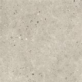 無作法な磁器の石のタイル(60011)