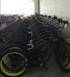 Presente 2017 do Natal En15194 36V/48V aprovado bicicleta elétrica da praia da venda quente poderosa e gorda de 250W com o pneumático gordo para a promoção