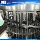 Tipo rotatorio línea completa del embotellado puro mineral del agua