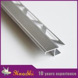 Escada de alumínio anodizada da telha que cheira guarnições da borda na cor de prata