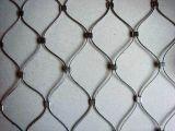 Animal de Againist de la cerca de la cuerda del metal