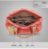 Saco novo do plutônio da forma da bolsa do tipo do saco de 2017 senhoras