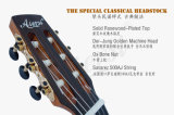 マスターの水平な顧客用古典的なギター