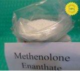 99% 순수성 Primobolan 스테로이드 근육 건물을%s 303-42-4 Methenolone Enanthate