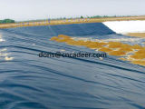 Plastic die Geomembrane/HDPE Geomembrane in Waterdicht wordt gebruikt