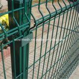 Rete fissa galvanizzata della rete metallica della rete fissa della rete metallica/di obbligazione