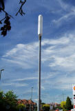Tour unipolaire de télécommunication de Costomed GM/M