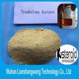 CAS : 10161-34-9 acétate de Trenbolone, poudre crue de stéroïdes anabolisant de construction de muscle