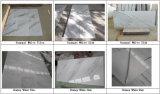 Het Klassieke/Beige Marmeren/Witte Marmer van Protugal Botticino/Botticino