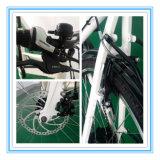 Stadt-Entwurf Ebike mit Scheibenbremse für Verkauf