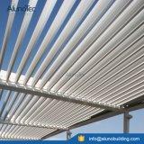 Feritoie di alluminio motorizzate tetto elettrico