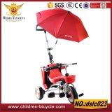 مصنع تنافسيّ زاويّة طفلة منتوجات /Children درّاجة ثلاثية