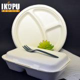 Desechable Biodegradable Paper Pulp Eco-Friendly Lunch Box