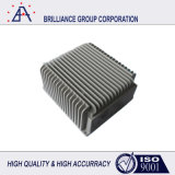 Прессформа заливки формы OEM высокой точности изготовленный на заказ алюминиевая (SY0002)