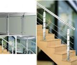 Установленный стороной Railing нержавеющей стали для террасы (HR1345C-4)