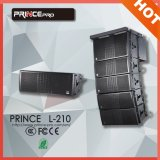 Doble de 10 pulgadas Potente Pro Audio Line Arrays