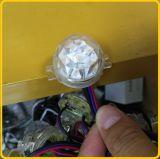 편집 가능 IC를 가진 LED 끈 램프