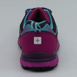 靴に上る靴をハイキングする最新の方法女性運動靴