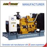 300kw gas natural Genset del rey Power con el sistema de Cchp