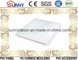Soffitto di marmo del PVC di disegno, comitato di parete del PVC con il prezzo poco costoso di alta qualità