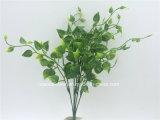 인공 플라스틱 또는 푸른 잎 풀이 나게 하십시오로 5개의 줄기 (XF90398)