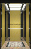 El espejo de la elevación del elevador del pasajero grabó al agua fuerte Sr. y Mrl Aksen Hl-X-055