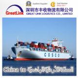 Transporte da carga do mar de FCL/LCL de Shenzhen/Shanghai/Tianjin, China a Aqaba, Jordão