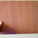 Meubles Board 14mm et 17mm Melamine et forces de défense principale de Natural Red Oak Veneer