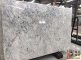 Китайские слябы Carrara Прага белизны серые мраморный для плиток/Countertops стены