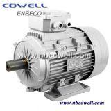 De hete Verkopende Direct Current Motor Van uitstekende kwaliteit van de 450kwgelijkstroom Motor