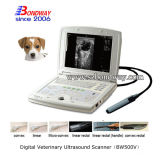 Varredor veterinário do ultra-som do instrumento de 4D Doppler