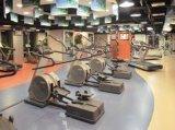 PVC Flooring für Indoor Muti-Function, Sports Flooring, Gym Flooring, 8401