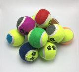 كلب كرة