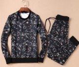 A roupa do lazer do desgaste ocasional ostenta o fato de desporto da camisola para o homem /Women