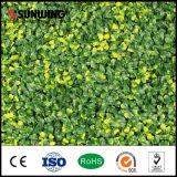 Barriere artificiali della stuoia del Boxwood della pianta di colore giallo della natura di prezzi bassi