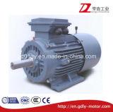 Moteur à induction triphasé de frein électromagnétique de Yej (80-225M)