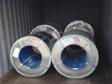 Galvanisierte Stahlbleche im Ring-Hersteller