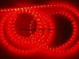 Lumière Lumière-Élevée de corde rouge de la tension 110V/220V de corde carrée de DEL (HVSMD-3528-60, HVSMD5050-30)