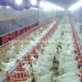Matériel automatique de bonne qualité de ferme avicole d'éleveur d'ensemble complet